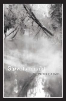 Svein Erik Kjærvik: Støvets ansikt